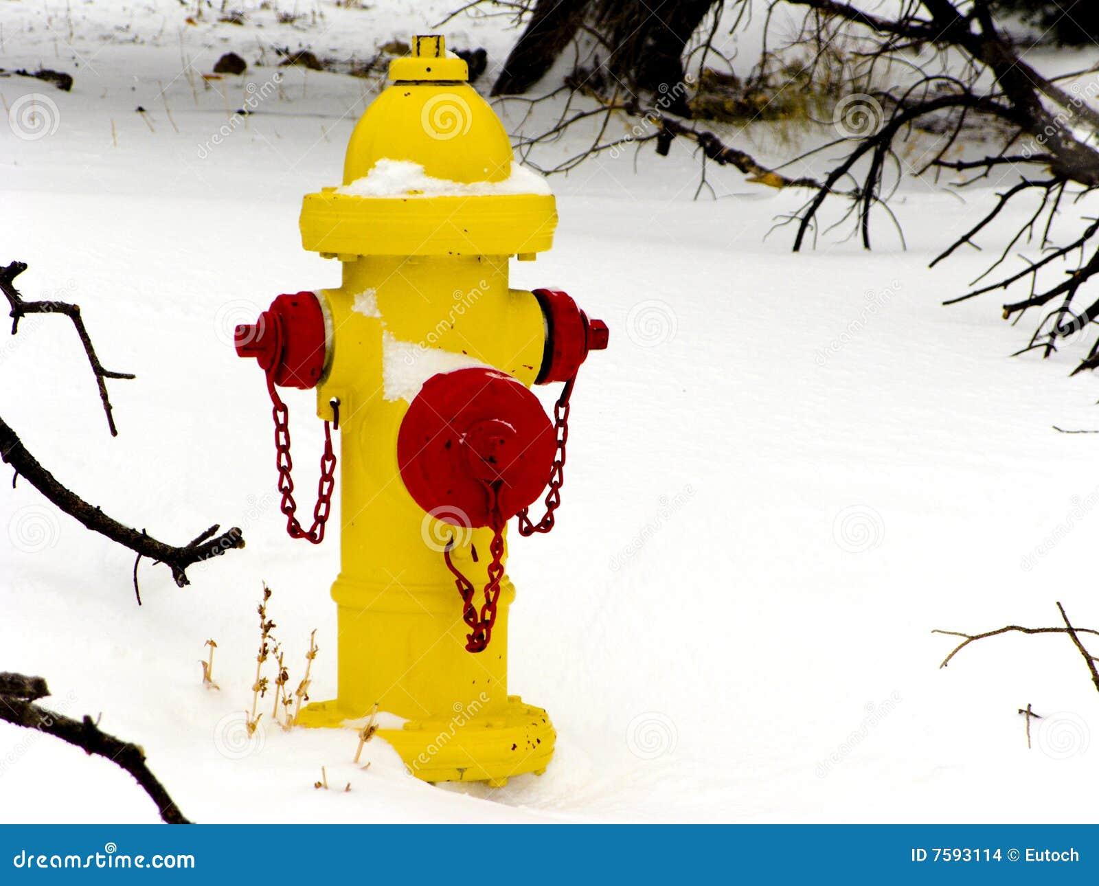 Feuer-Hydrant