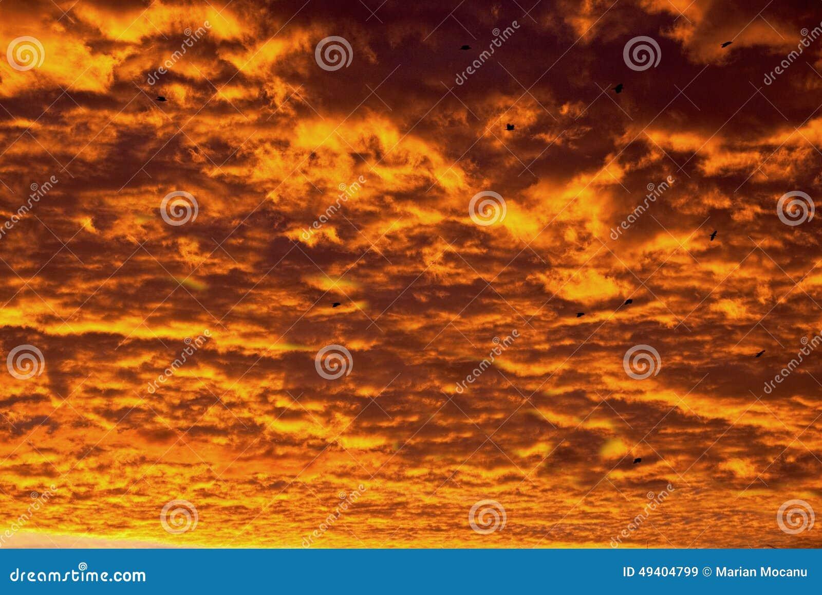 Download Feuer im Himmel stockbild. Bild von umhang, orange, landschaft - 49404799