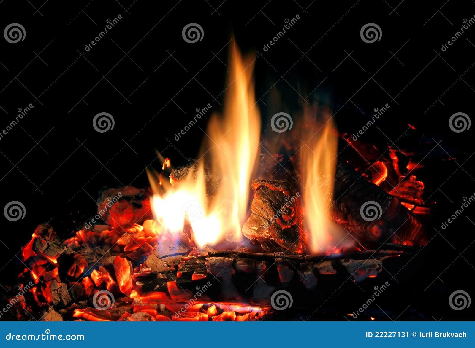 feuer im kamin stockbild bild von flamme brennholz 22227131