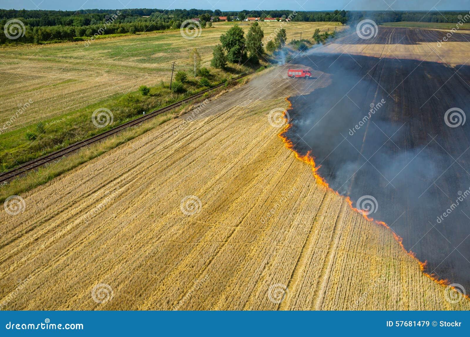 Feuerwehrmann-LKW, der an dem Feld auf Feuer arbeitet