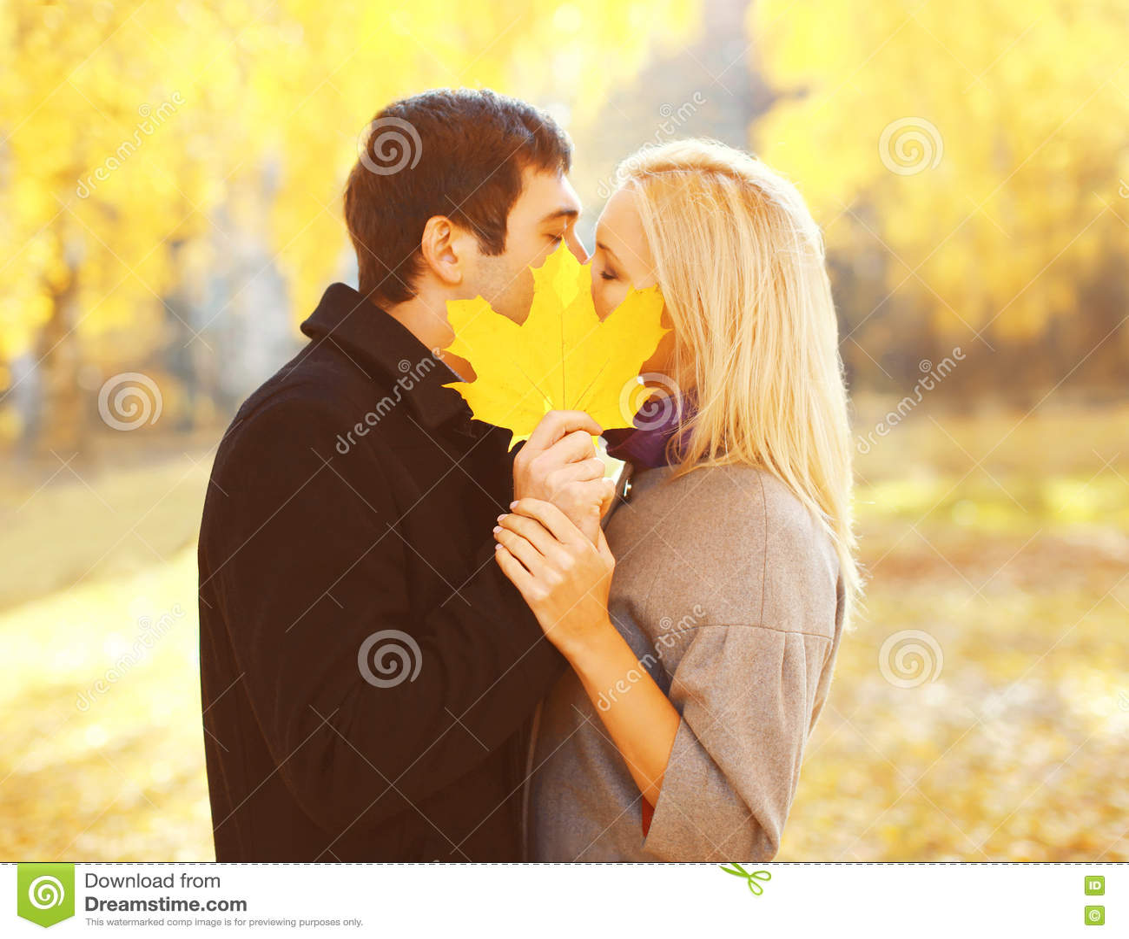 Feuille d érable jaune fermante de baiser de jeunes couples affectueux de portrait en automne ensoleillé chaud