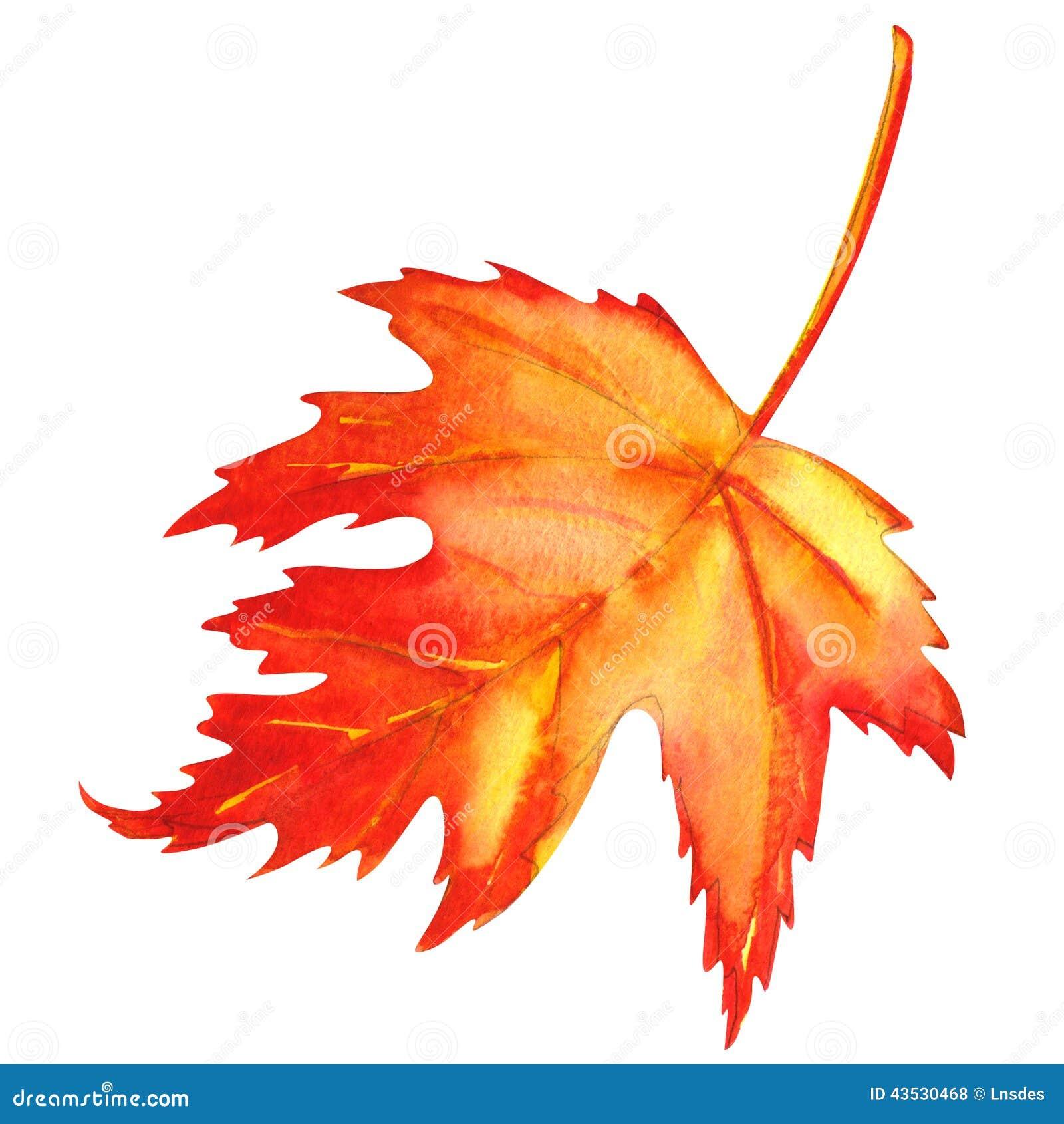 Feuille d 39 rable rouge comme symbole d 39 automne illustration stock illustration du orange - Feuille erable dessin ...
