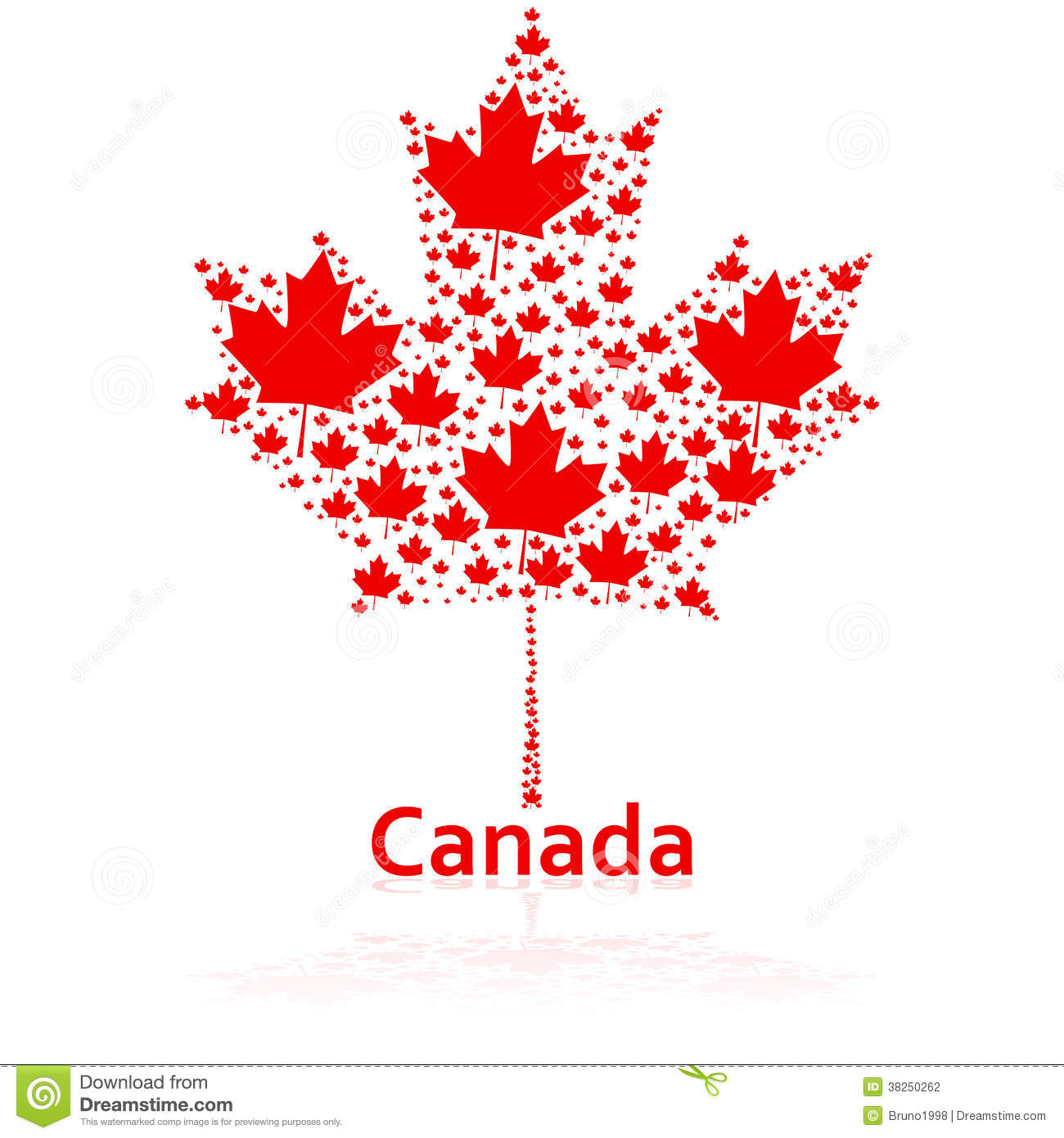 Feuille d 39 rable canadienne photographie stock image 38250262 - Erable rouge du canada ...