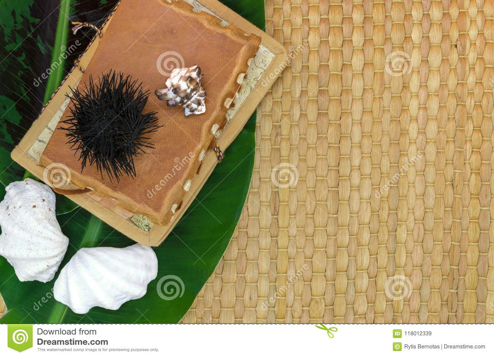 Feuille de banane, vieux livres de voyage, coquillages et oursin sur Brown Straw Mat Background avec l espace libre
