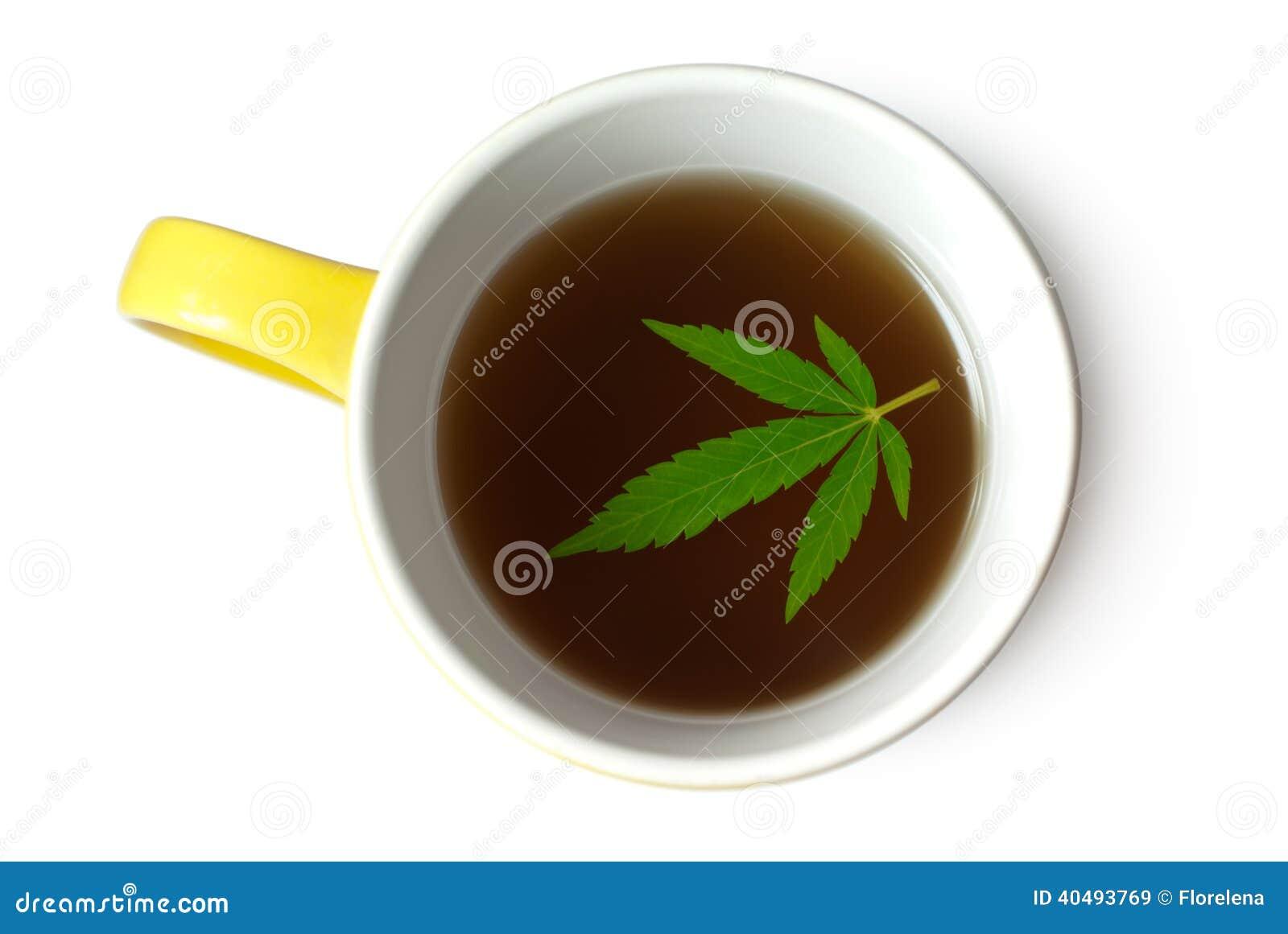 Feuille de chanvre (cannabis) dans la tasse de thé
