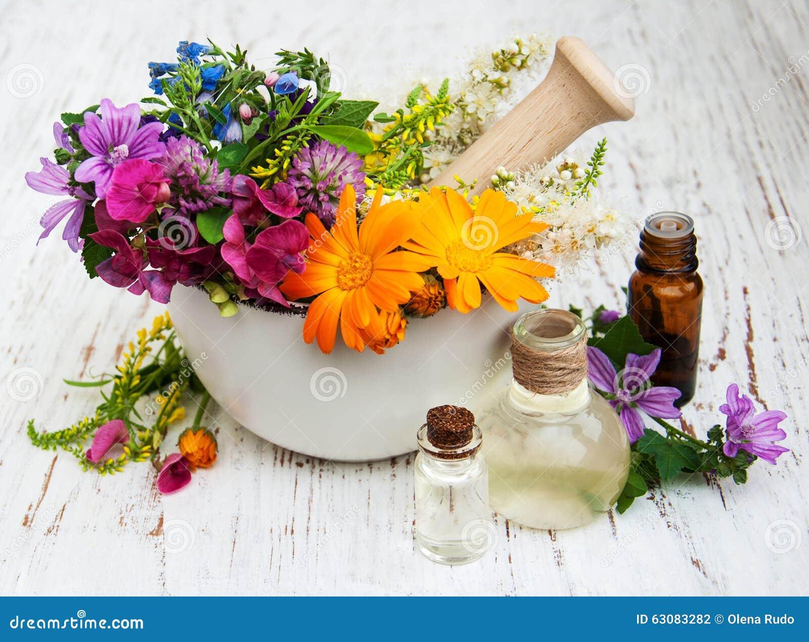 Download Feuille De Fleur Sauvage Et D'herbe En Mortier Photo stock - Image du blanc, herbal: 63083282