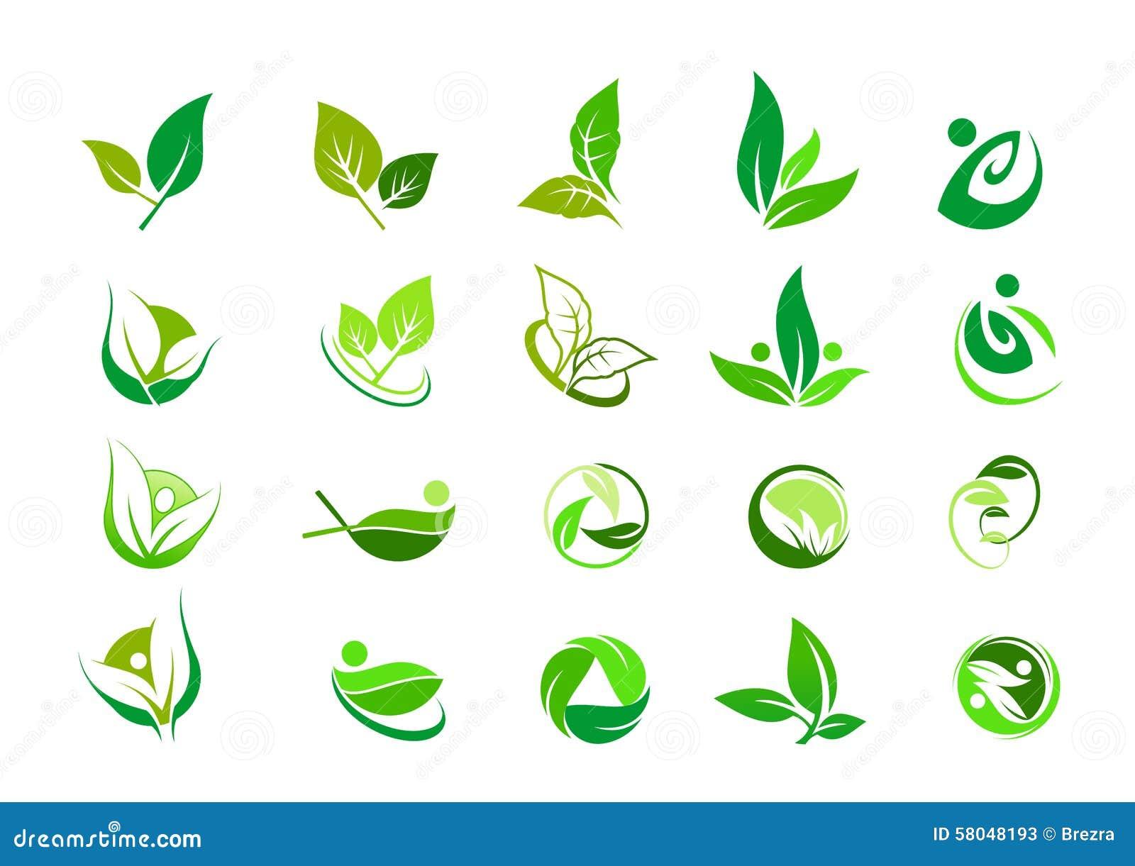 Feuille, logo, organique, bien-être, les gens, usine, écologie, ensemble d icône de conception de nature