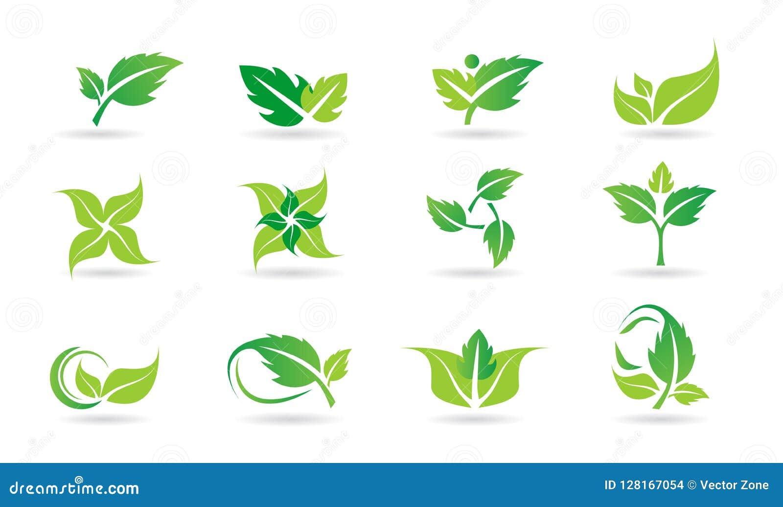 Feuille, logo, usine, écologie, les gens, bien-être, vert, feuilles, ensemble d icône de symbole de nature d ensemble d icône de