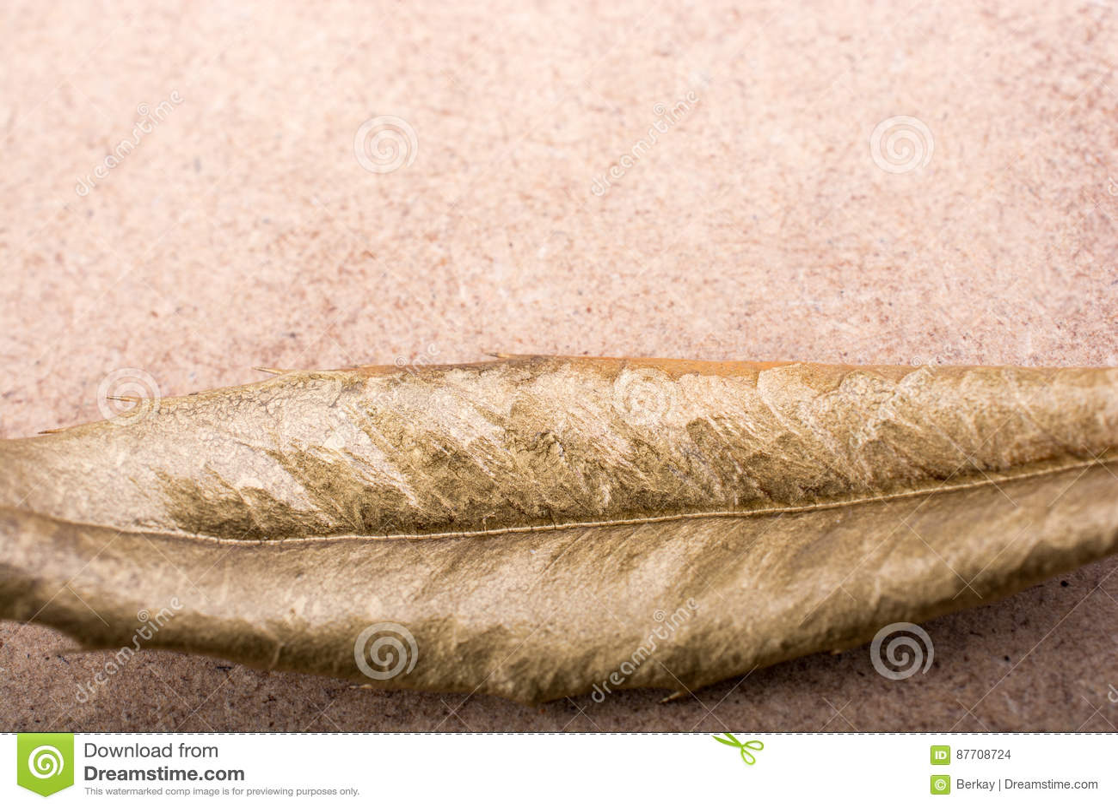 Feuille sèche sur le fond de tapis de paille