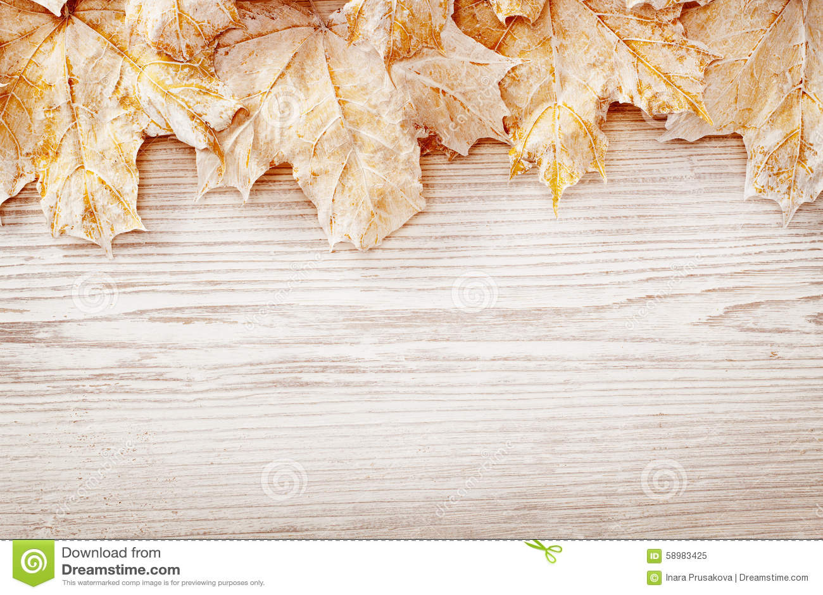 Feuilles blanches de fond en bois, Autumn Wooden Grain Board Texture