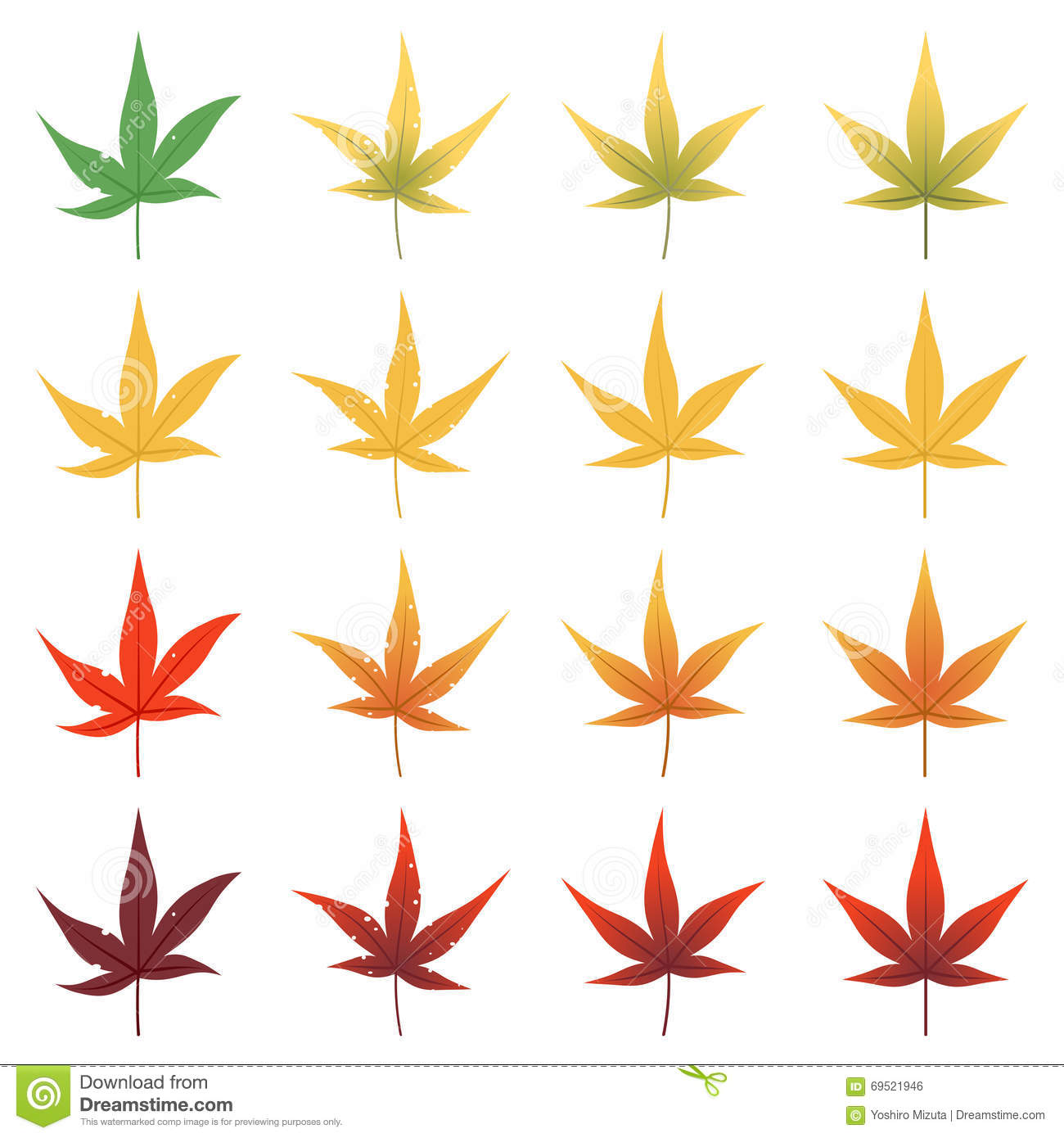 Feuilles d 39 rable du japon illustration de vecteur image 69521946 - Feuille erable du japon ...
