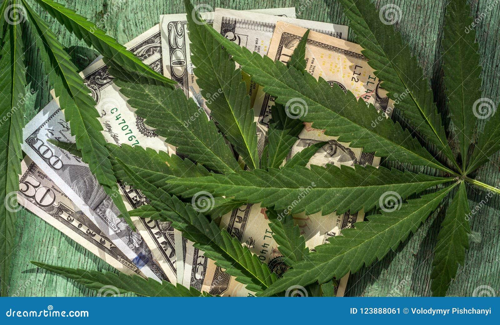 Feuilles de marijuana dans la perspective des billets d un dollar