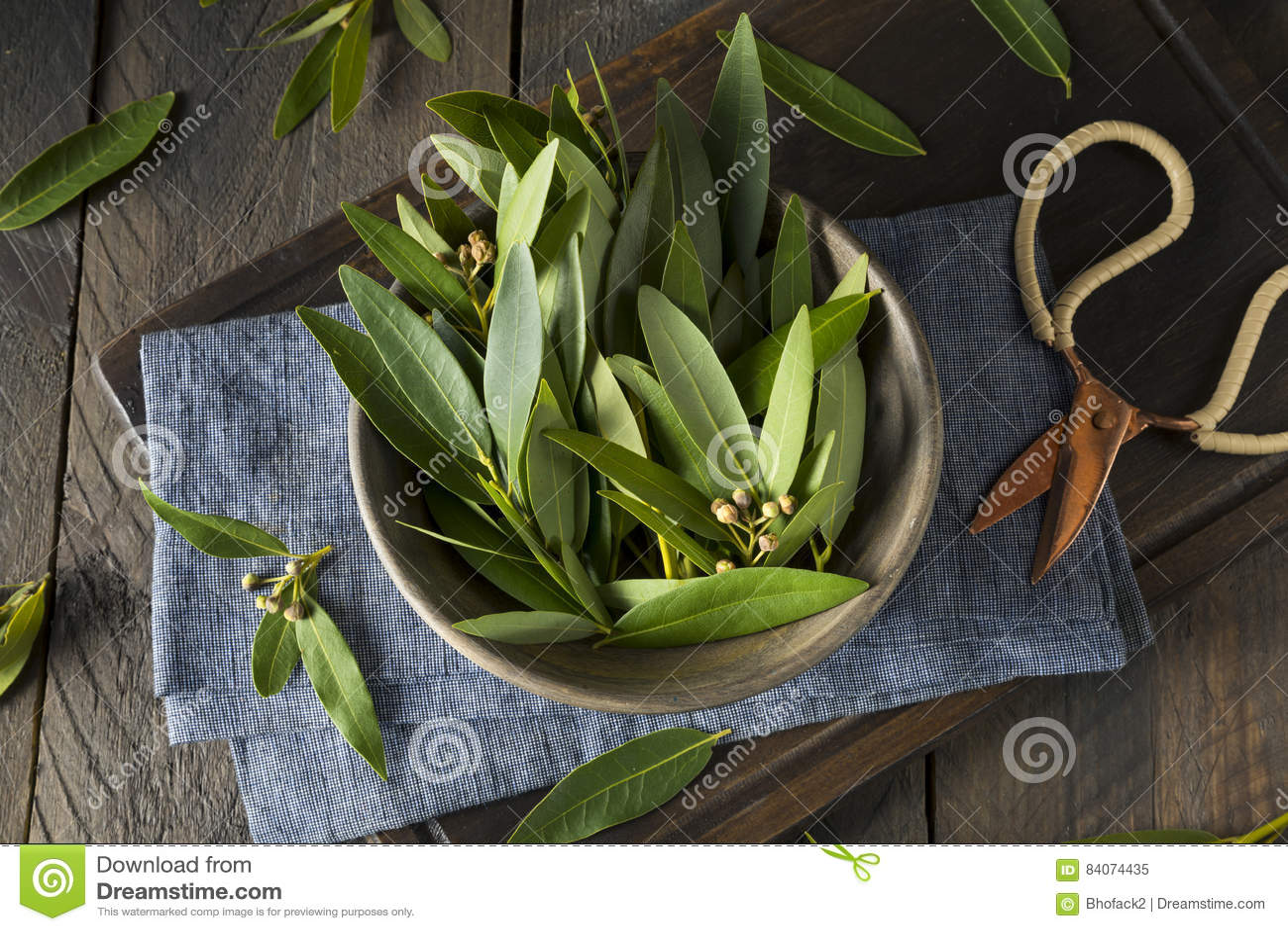 Feuilles organiques fraîches de Green Bay