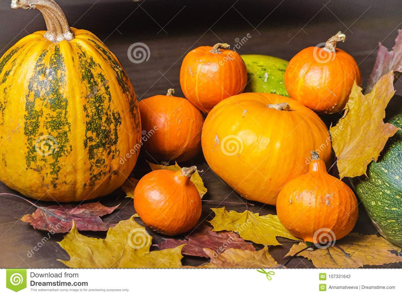 Feuilles toujours d Autumn Orange Pumpkin With Dry de la vie