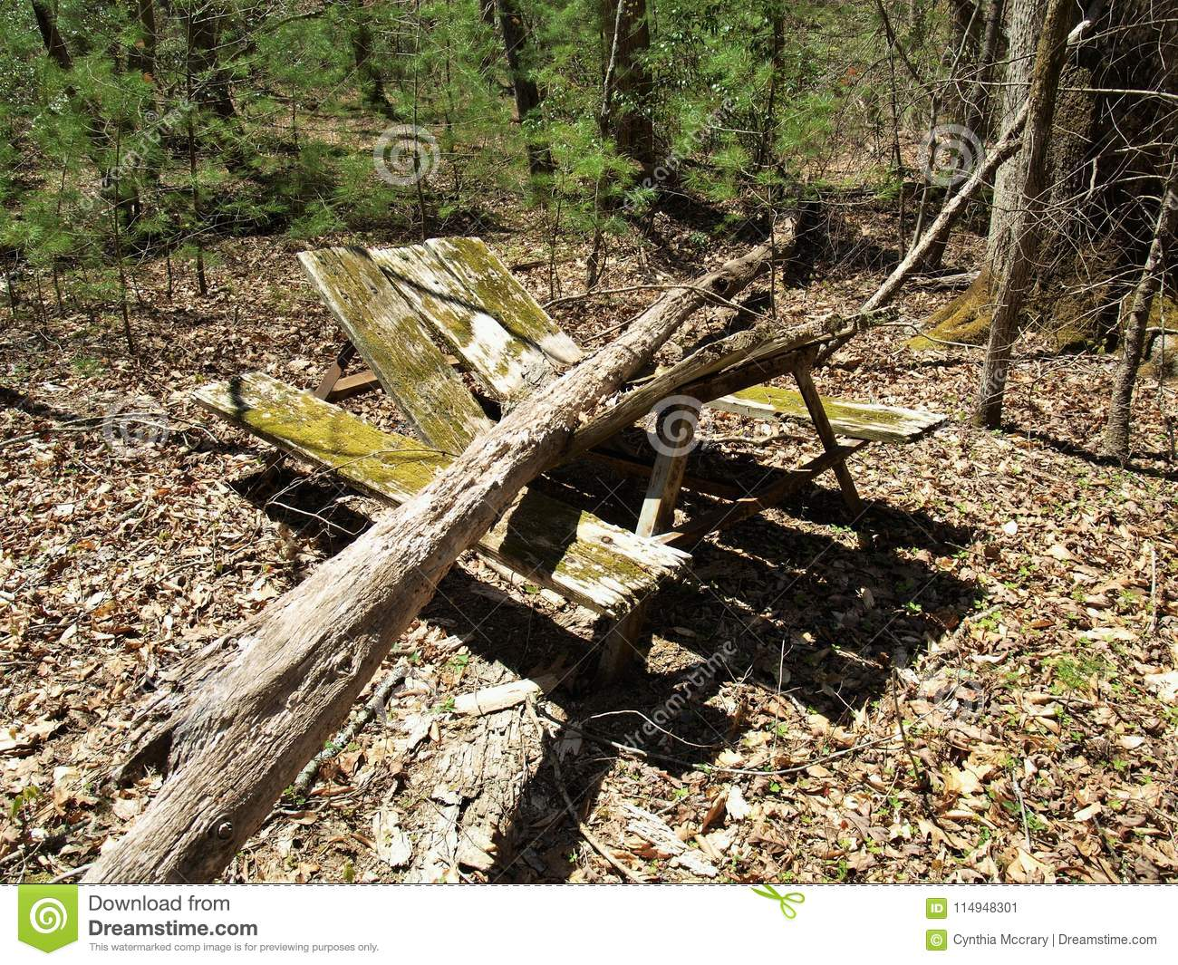 Broken Picnic Table In Abandoned Campground Stock Image Image Of - Stone picnic table