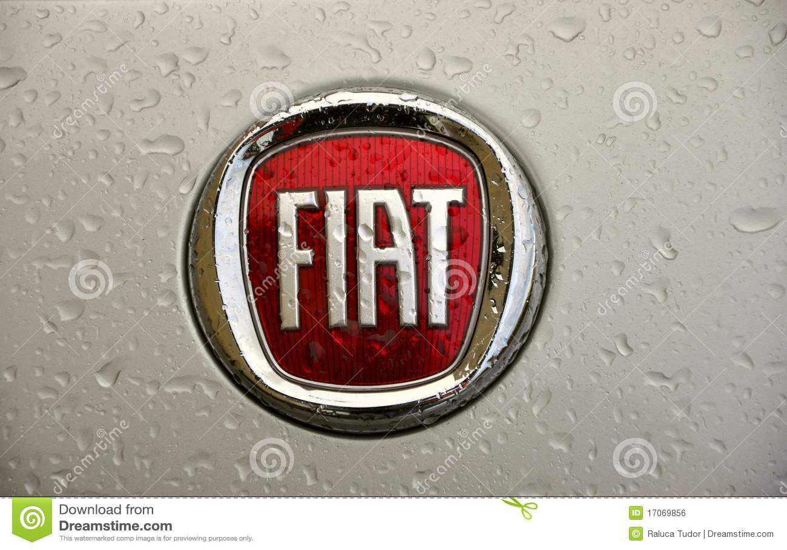 Fiat Logo Editorial Photo Image Of Company International 17069856