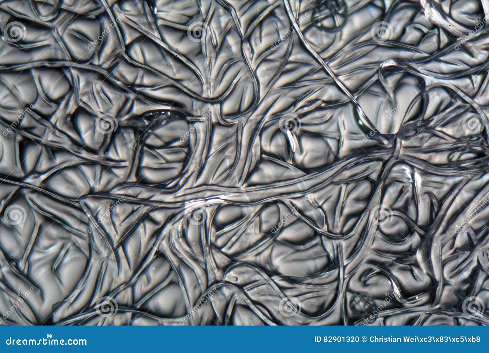 Fibers of Cellulose acetate under the microscope.