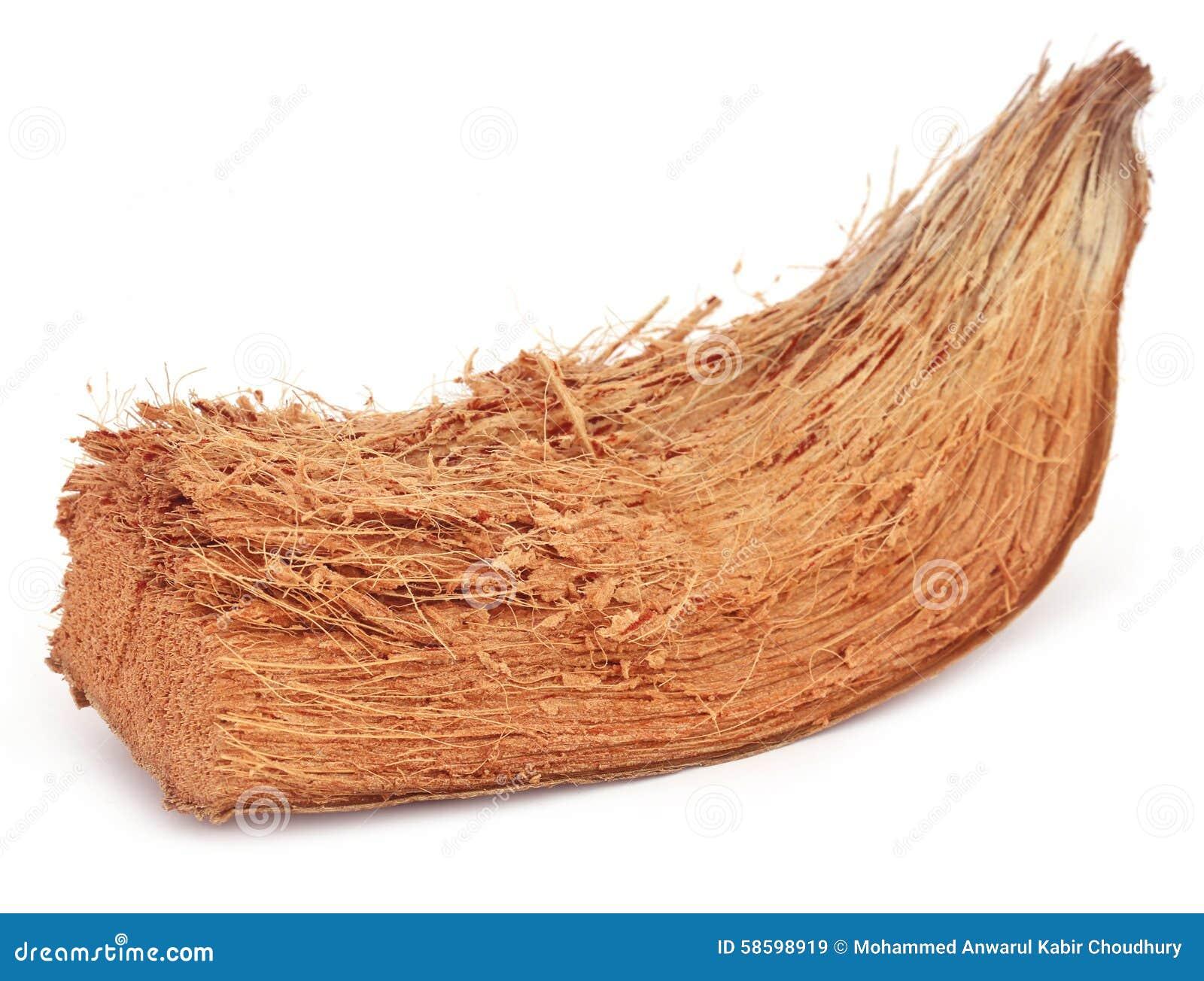 Paillis Noix De Coco fibre de coco des noix de coco image stock - image du