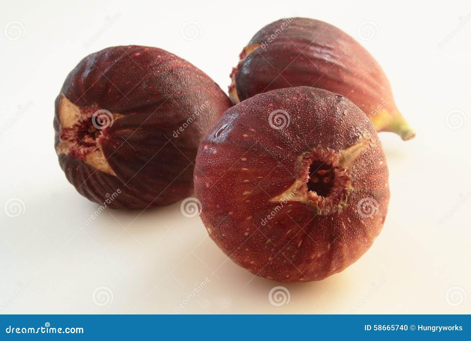 Ficus Carica owoc