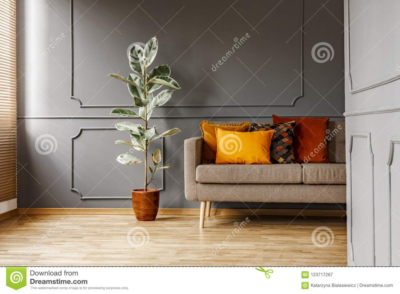 Phenomenal Ficus Next To Brown Couch With Orange Pillows In Dark Grey Caraccident5 Cool Chair Designs And Ideas Caraccident5Info