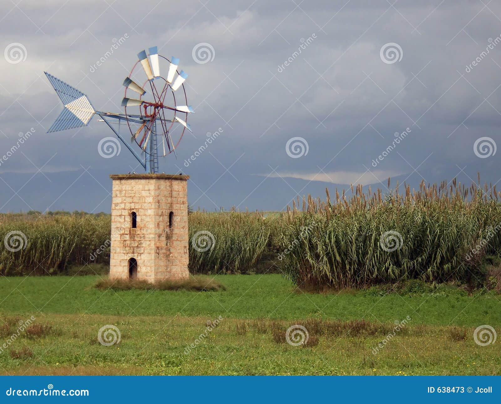 Download Field ветрянка стоковое изображение. изображение насчитывающей aiders - 638473