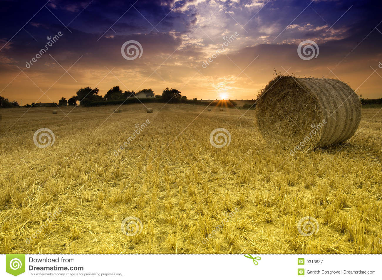 Field with Bales of Straw