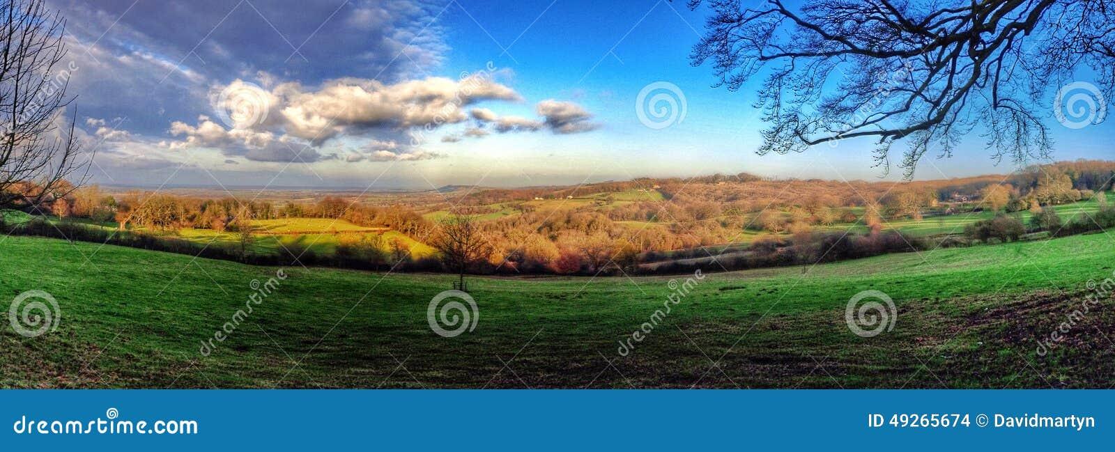 Field Stock Photo - Image: 49265674