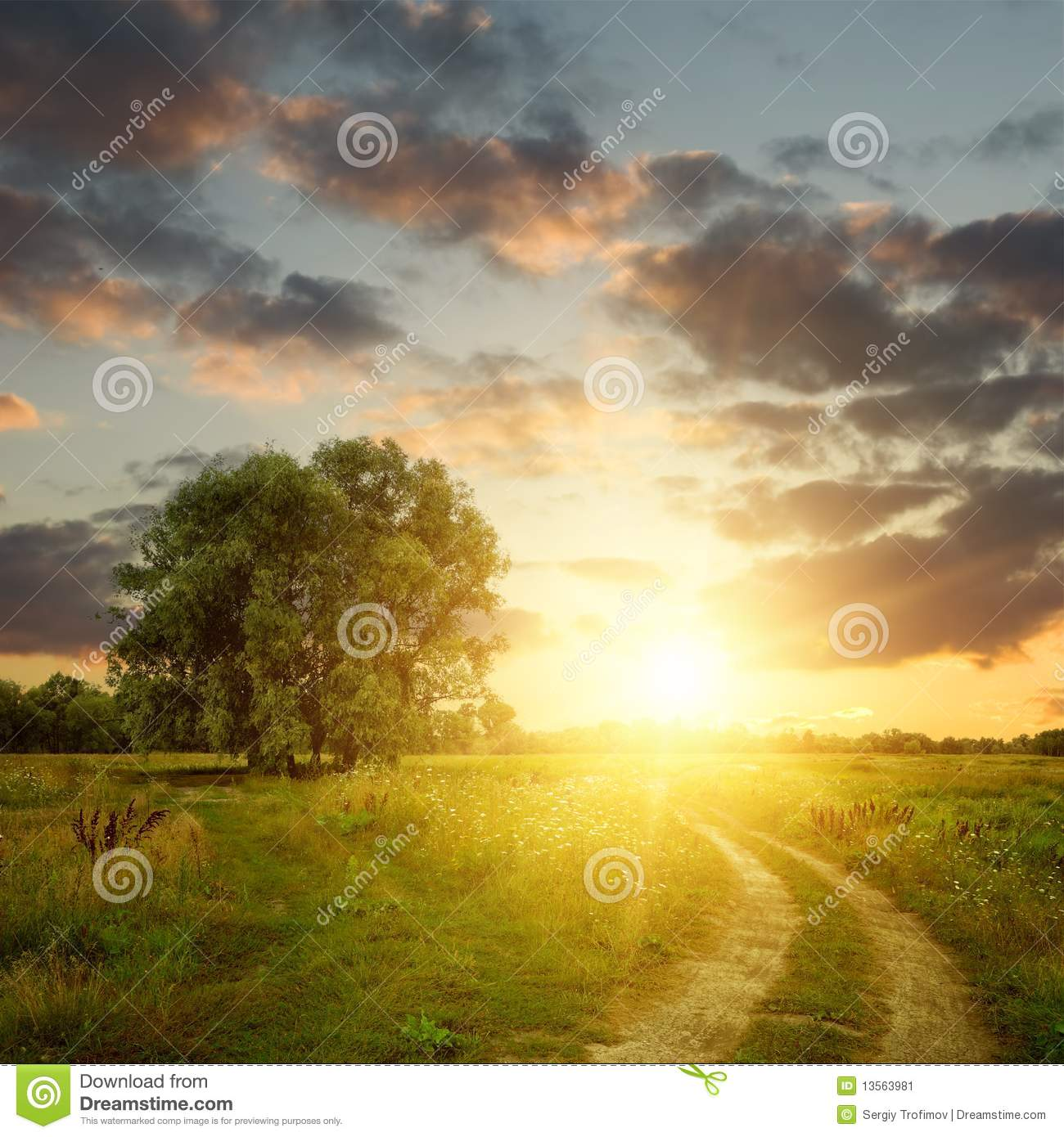 Field and dirt road to sunset