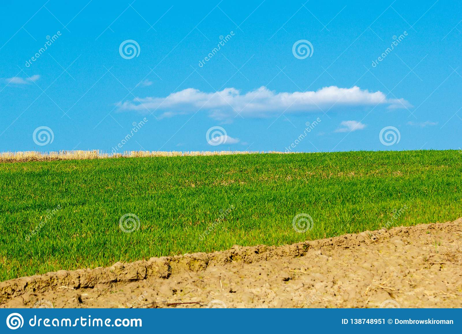 Field of Farmland Crops and Beautiful Blue Sky Above