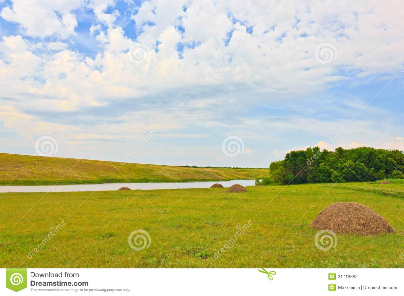 Field landscape with river and hay