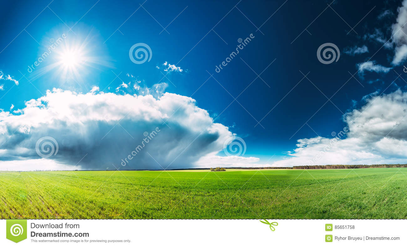 Field Or Meadow Landscape With Green Grass Under Scenic Spring Blue Sky With White Fluffy Clouds And Shining Sun