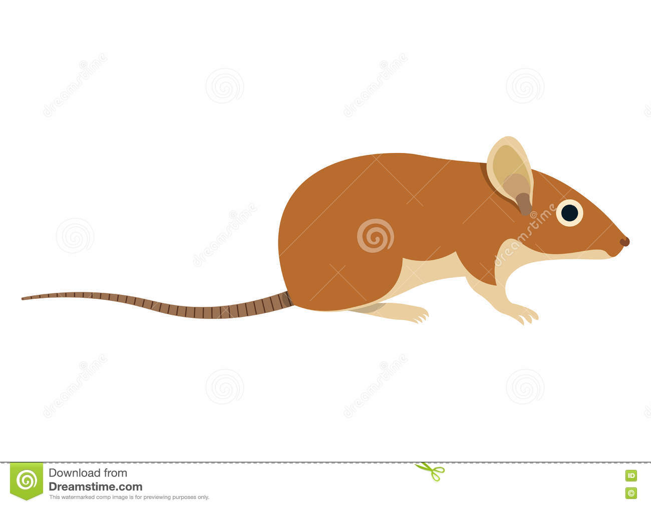 Vole cartoons illustrations vector stock images 37 for Field mouse cartoon