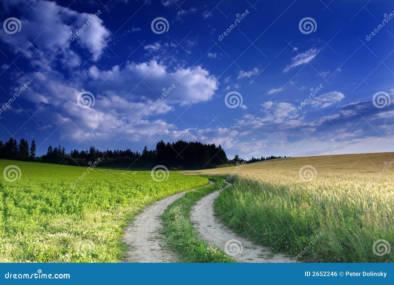 Field Winding Way