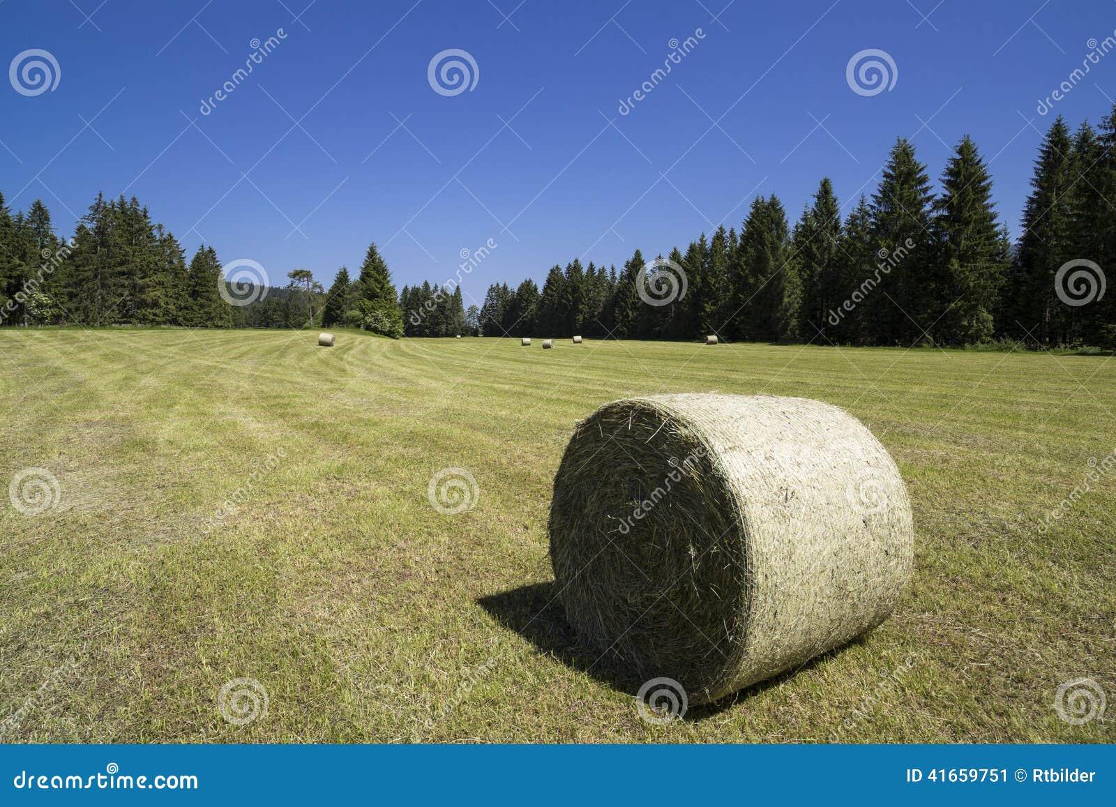 Fields harvesting