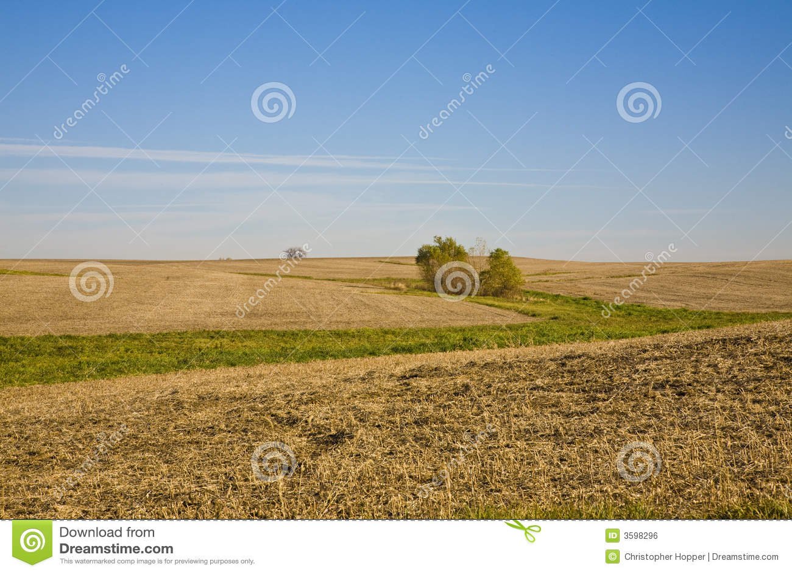 Fields illinois ноябрь