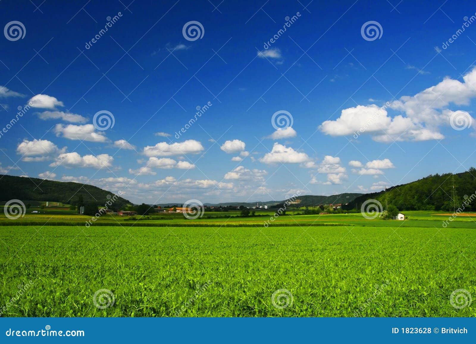 Fields soliga schweiziska switzerland