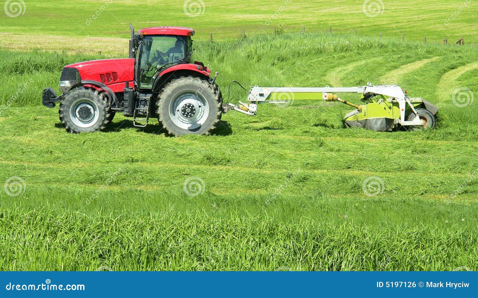 Fieno del trattore agricolo del coltivatore