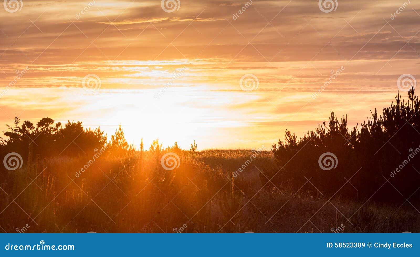 fiery glow burning sunset - photo #45