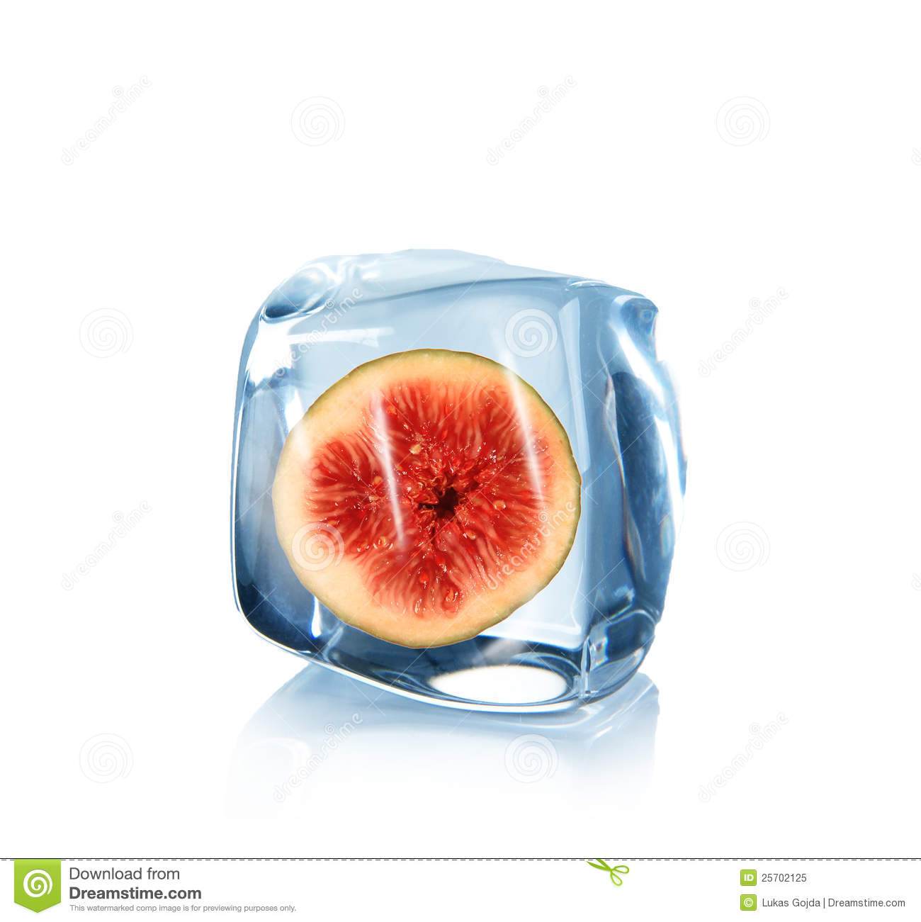 Fig in Ice cube