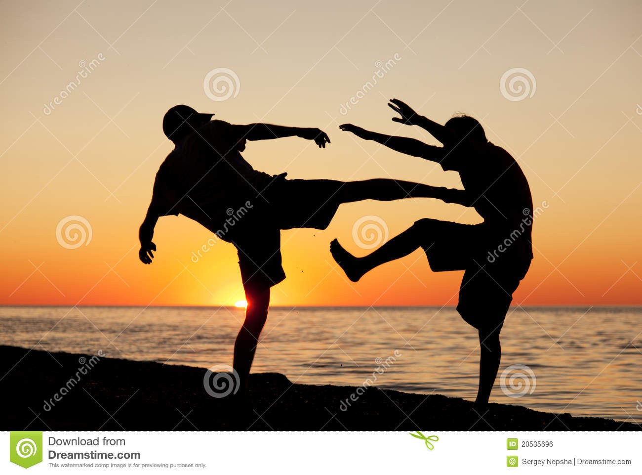 fight on a beach royalty free stock image image 20535696