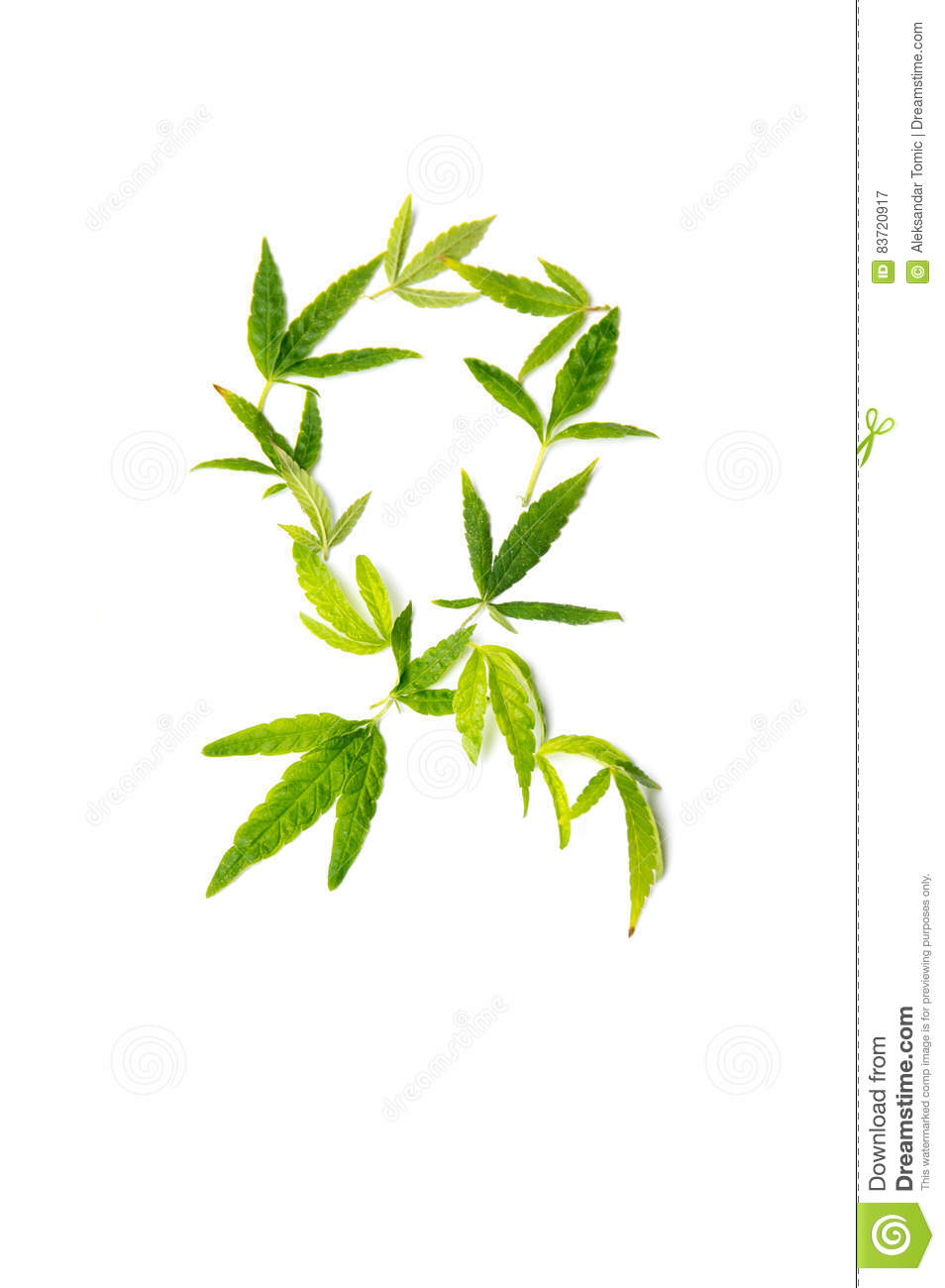 Fight Cancer Sign Made From Marijuana Leaves Stock Photo