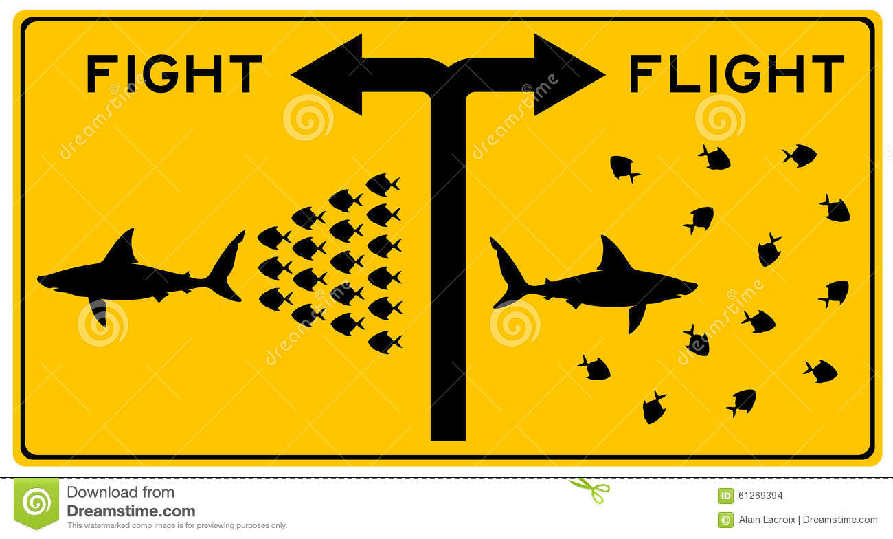 the fight or flight syndrome The fight-or-flight response allows us to respond to a real emergency as we are programmed to do however, in the case of panic disorder, it appears that the fight-or-flight response is occurring in our body for no discernable reason.
