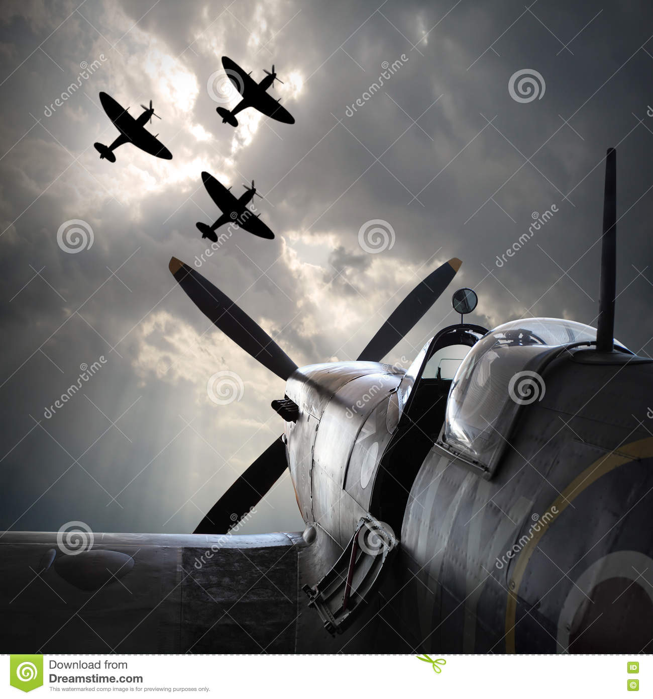 The Fighter planes.