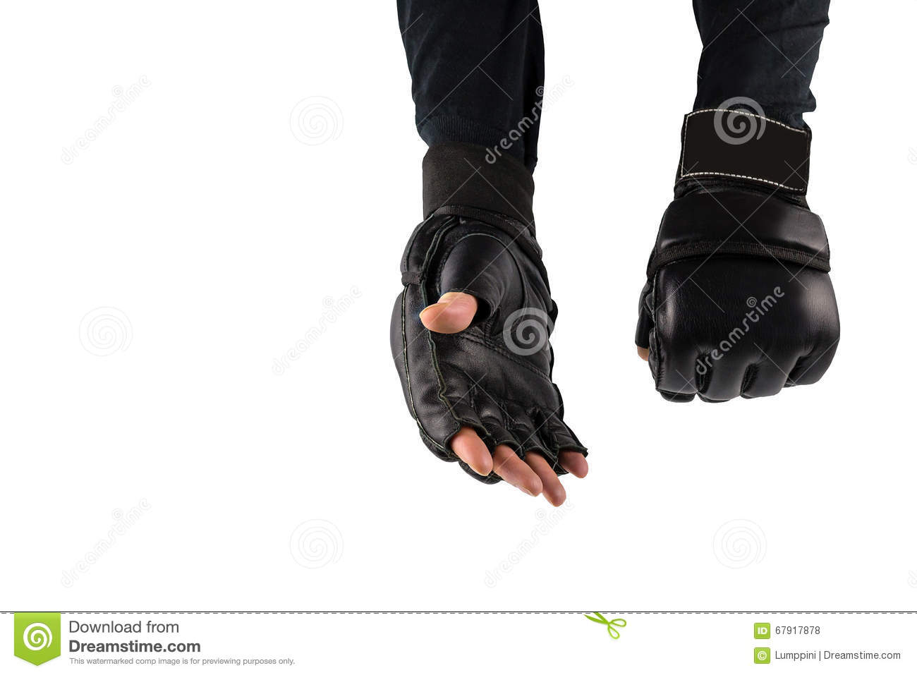 Fighters hand in gloves for martial arts stock photo image of fighter s hand in gloves for martial arts m4hsunfo