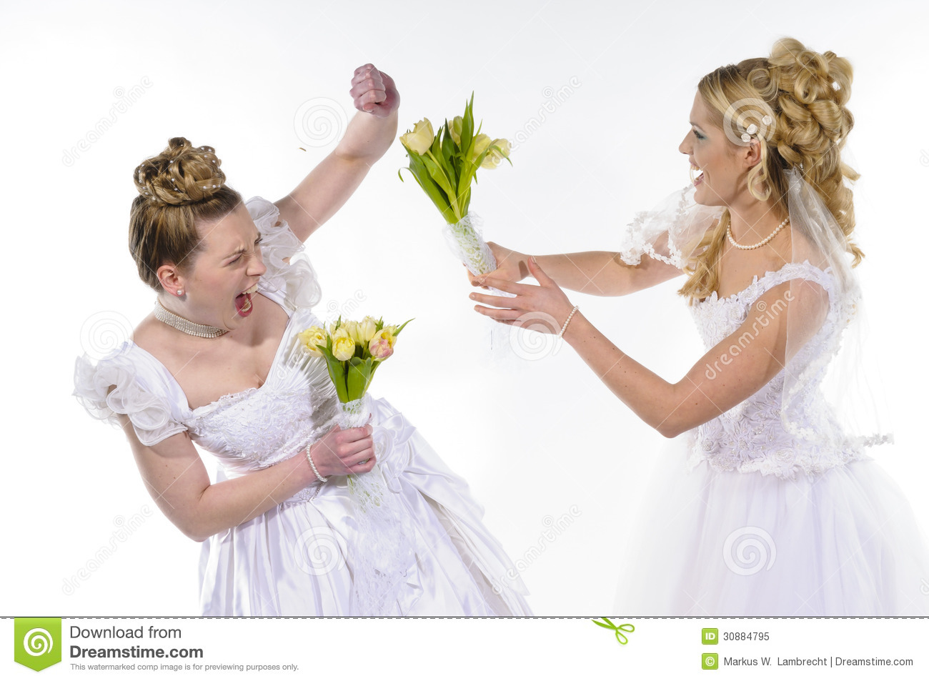 fighting brides stock image image of bride blond beauty
