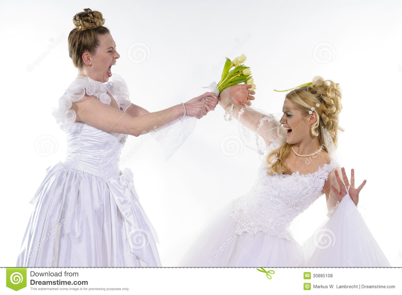 Fighting brides royalty free stock photos image 30885108 for Wedding dresses for young brides