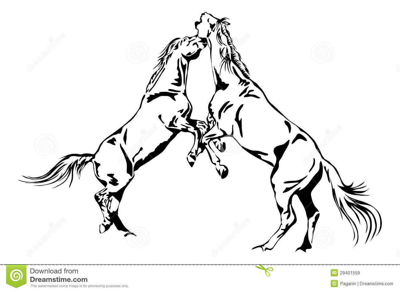Fighting Horses Royalty Free Stock Images Image 29401559