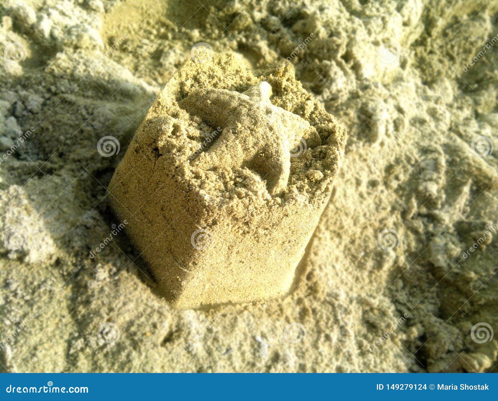 Figura da estrela do mar na areia molhada no tempo nebuloso