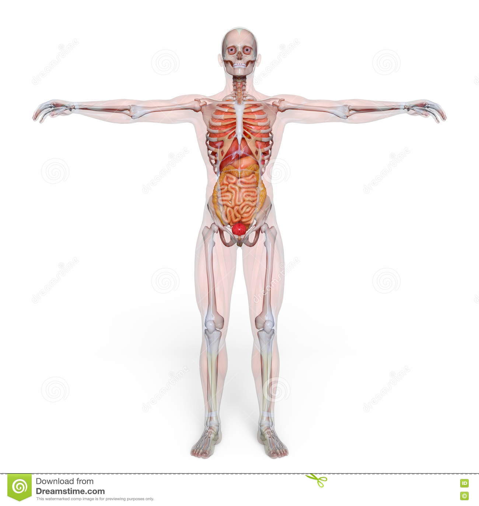 Figura de endecha masculina