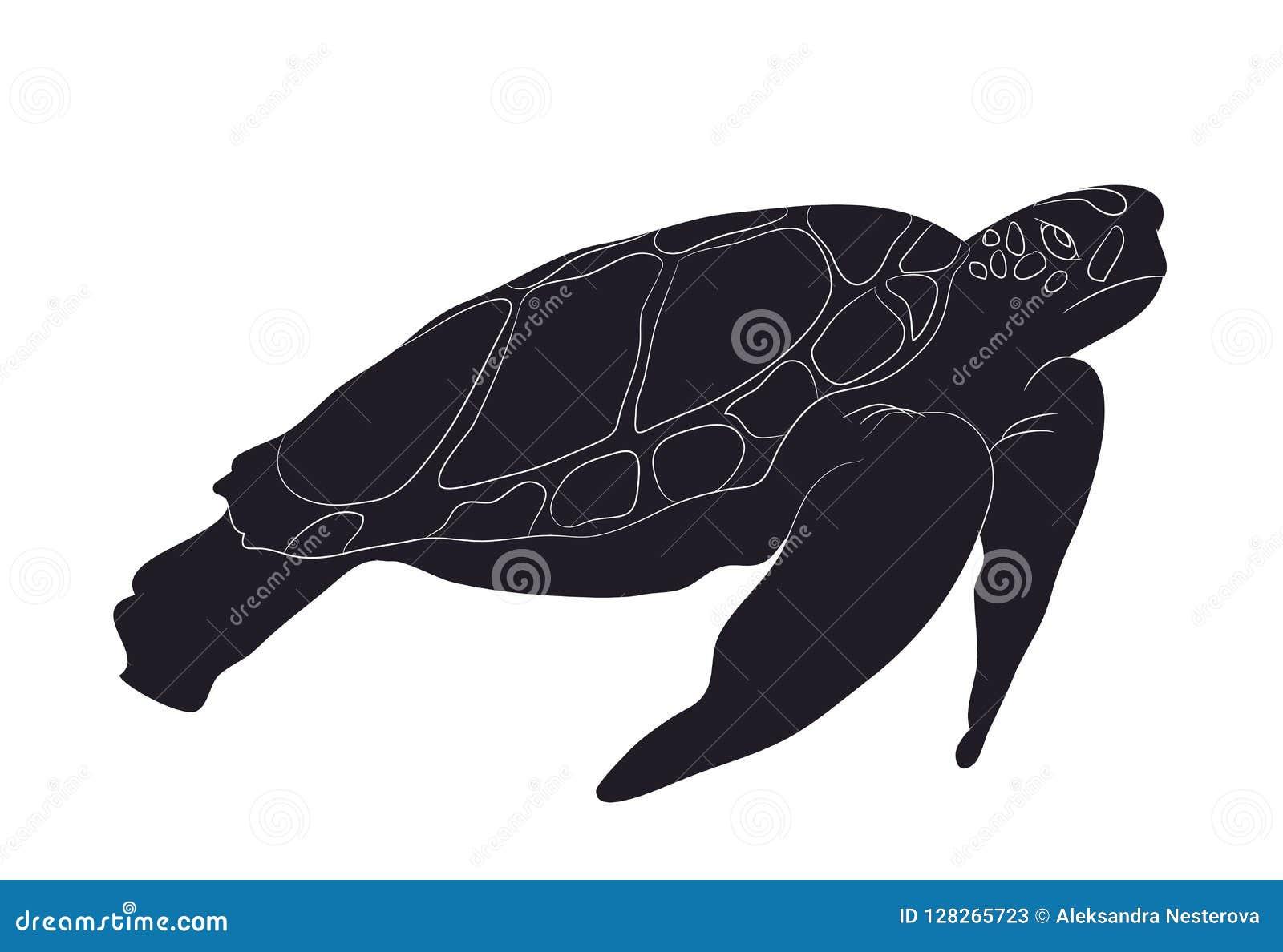 Figura Silueta Vector De La Nadada De La Tortuga Ilustración Del